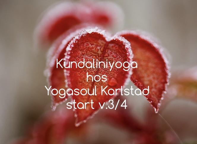Vill du starta året med yoga?